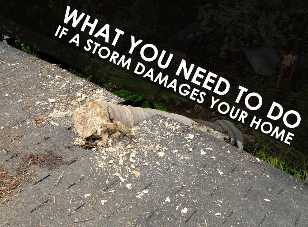 What You Need to Do If a Storm Damages Your Home